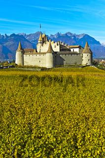 Weinmuseum Schloss Aigle, Chateau d'Aigle, Aigle, Waadt, Schweiz