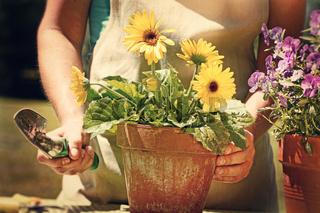 Woman doing garden work with vintage look