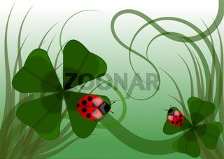 glücksklee mit marienkäfer, hintergrund, grußkarte