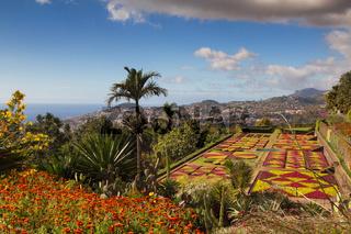 Botanical garden of Funchal