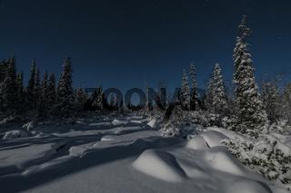 Winterlandschaft im Mondenschein, Muddus, Lappland