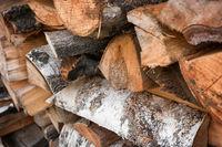 Dry firewood of birch
