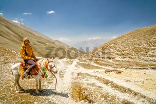 Hiker on horse