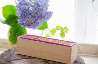 homemade calendula natural herbal soap