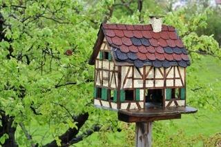 Altes Vogelhaus als Fachwerkhaus