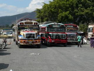 Autobusse