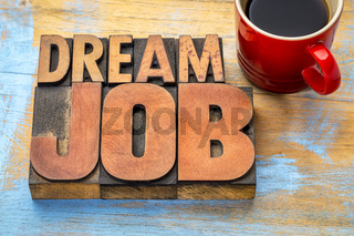 dream job word abstract in wood type