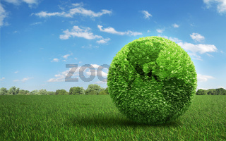 Leaf covered Earth on a green  field of grass
