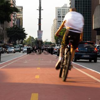Male cyclist in bike lane. Sunlit.