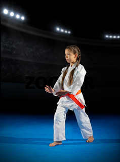 Little girl martial arts fighter in sports hall