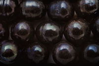 Background with shiny beads of black pearls macro