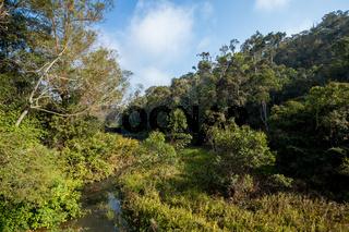 Madagascar beautiful landscape