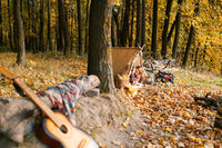 Man and woman hikers camping in autumn nature. Happy young couple backpackers camping in tent.