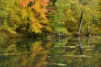 Fall Colors Reflected on a Lake