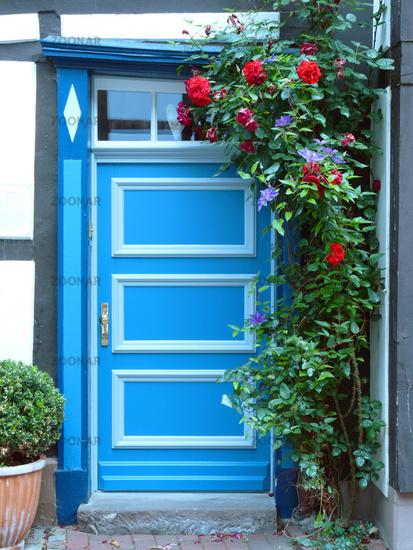 Turbo Foto Blaue Haustür in Fachwerkhaus mit Rosenstock Bild #812437 GP63