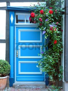 Blaue Haustür in Fachwerkhaus mit Rosenstock