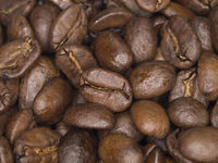 Kaffeebohnen, Coffee Beans