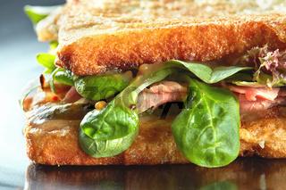 Fresh toasted panini blt sandwich