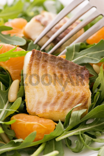Rocket Salad with Tilapiini and tangerine slices as closeup on a white plate