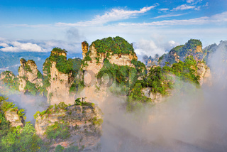 Trees on the colorful cliffs in Zhangjiajie Forest Park.