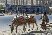 Strassenszene in der Kleinstadt Agula,  Tigray, Äthiopien