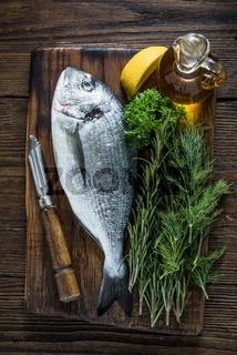 Fresh sea fish and herbs