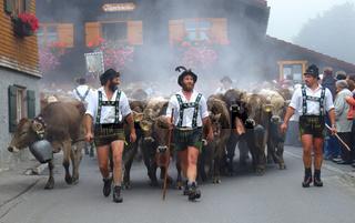 Viehscheid in Gunzesried Alpe Unterkirchen