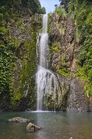 Kitekite Falls, Waitakere Ranges Regional Park, New Zealand