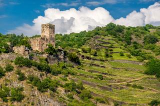 Gutenfels Castle and vineyards at Rhine Valley near Kaub, Germany.