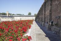 Ravensbrück Concentration Camp Memorial Fürstenberg Havel – Wall of Nations behind the mass grave, Brandenburg, Germany
