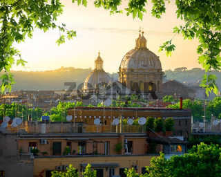 Vatican and nature