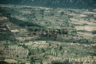Olivenhaine und Weinfelder vom Pass Genna Silana, Sardinien