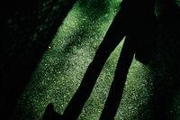 Schatten eines Mannes vor einem Zaun