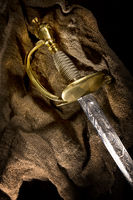 Ancient sabre. A smart variant of the fighting weapon