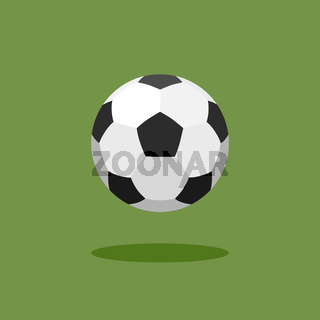 Classic soccer ball on green background
