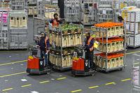 Kleinsttransporter ziehen Wagen mit versandfertiger Pflanzen und Blumen,Royal FloraHolland, Aalsmeer