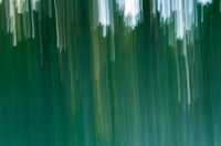 Motion blurred foliage and forest. Natural abstract background with blurry forest photographed with moving camera.