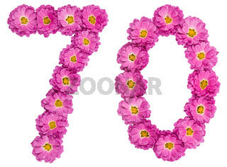 Arabic numeral 70, seventy, from flowers of chrysanthemum, isolated on white background