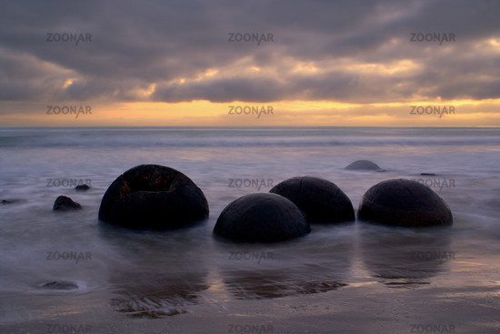 Moeraki Boulders, runde Felskugeln bei Sonnenaufgang, umgeben vom Wasser der einlaufenden Flut, Coastal Otago, Suedinsel, Neuseeland, Moeraki Boulders, massive spherical rocks at dawn surrounded by water of incoming tide, Coastal Otago, South Island, New