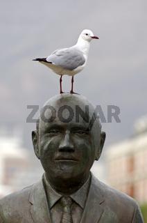 Möwe steht auf dem Kopf von Friedensnobelpreisträger F. W. de Klerk