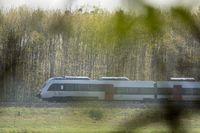 S-Bahn Mitteldeutschland bei Roßlau