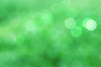 Bokeh on green background.