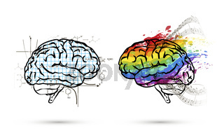 Technical and art hemispheres on human brain in side view, left and right brain functions concept on white