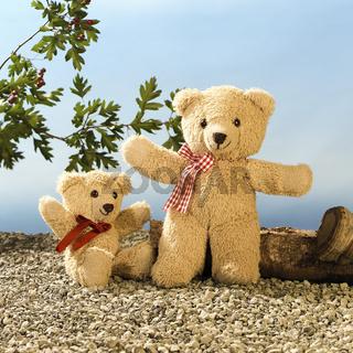 Teddy, Vater und Sohn