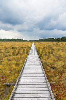 Hiking trail to a wooden footbridge across a bog