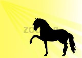 pferd spanischer schritt, silhouette
