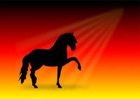 pferdesilhouette auf hintergrund deutschlandfahne