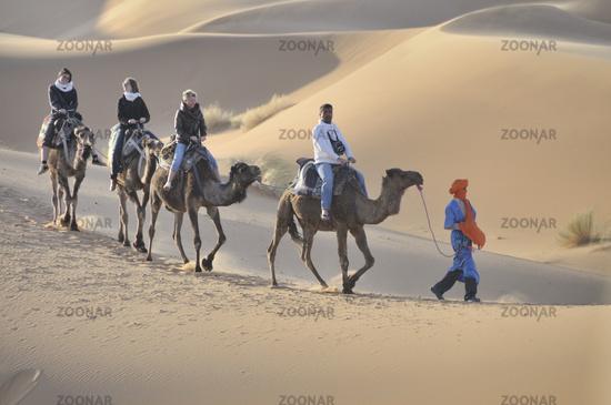 Kameltrekking, Erg Chebbi, Marokko, Afrika