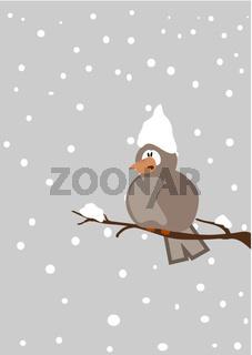 Vogel auf Ast im Schnee