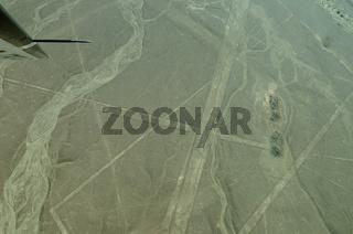 Wal Nazca Linien Peru